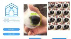 Evcil hayvanlarımız, bizler için oldukça önemli. Onların başına bir şey geldiğinde, tıpkı ailemizden birisine kötü bir şey olmuş gibi hissederiz. Çin merkezli yüz tanıma yazılımları firmasıMegvii de bu konuda duyarlılık göstererek kayıp köpeklerin sahiplerinin anında bulunmasını sağlayan bir yapay zekâ geliştirdi. Çinli şirket,köpeklerin sadece bir fotoğraf sayesinde bulunabilmelerine olanak tanıyor. Gerçek anlamda önemli olan bu proje, Çin Halk Cumhuriyeti için yüz tanıma sistemlerini geliştiren firmaMegvii'dengeliyor. Yüz tanıma yapay zekâsını insanlar yerine hayvanlar üzerinde kullanacak olanMegvii, yapay zekâsını köpeklerin burunlarındaki izleri algılamak üzere yeniden programladı. Köpeklerin burunlarında bulunan izlerin insanların parmak izleri gibi eşsiz olması sebebiyleMegvii'nin bulduğu çözüm fazlasıyla tutarlı.