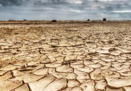 Çin'de kuraklık alarmı verildi!